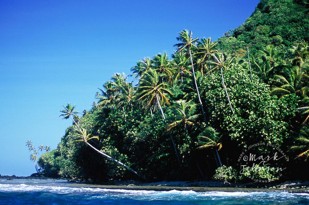 Lush jungle on the Te Pari coast, Tahiti, French Polynesia