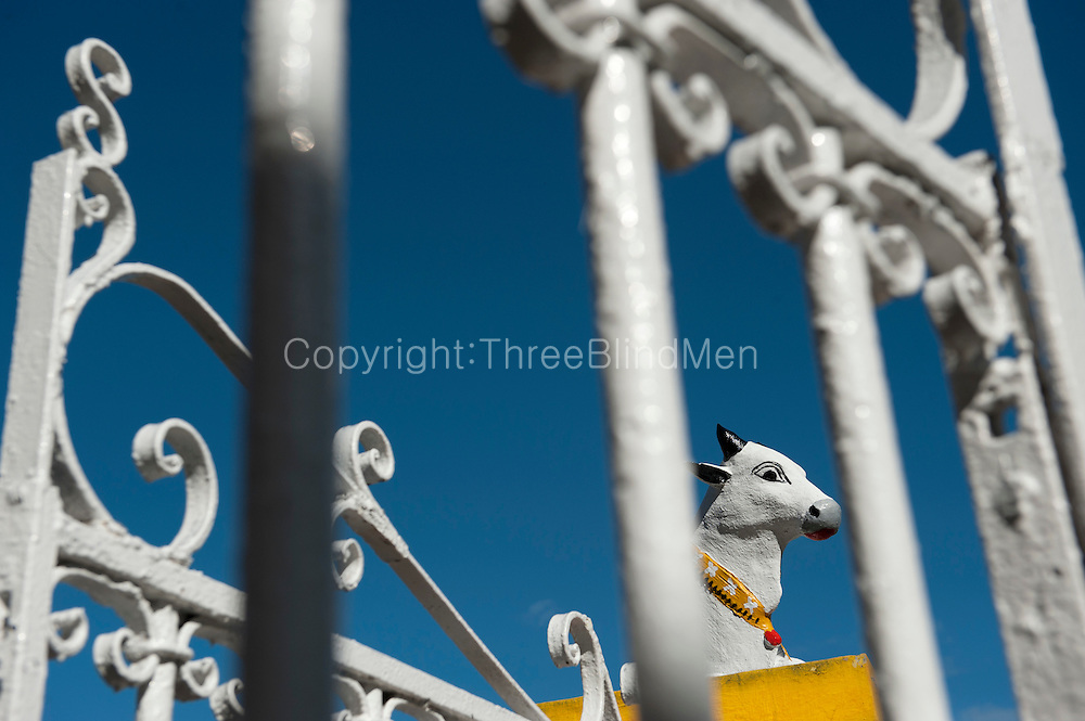 Mauritius. Nandi and wrought iron gates. Large Hindu temple Port Louis.<br /> The Sockalingum Meenatchee Ammen Kovil, known as Kaylasson, is the largest Tamil temple in the country and a central place for celebrating the Tamil festival of Kavadee.