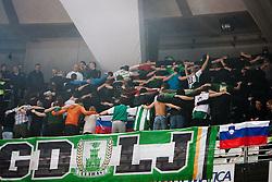 Green Dragons, fans of Olimpija during Euroleague Top 16 basketball match between Lottomatica Virtus Roma (ITA) and KK Union Olimpija Ljubljana (SLO) in Group F, on January 20, 2011 in Arena PalaLottomatica, Rome, Italy. (Photo By Vid Ponikvar / Sportida.com)