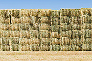 stack of rectangular hay bales in a field near Donald, Victoria, Australia <br />