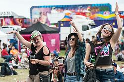Festivalgoers enjoyingn themselves at the Brownstock Festival in Essex.
