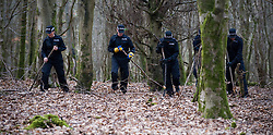© under license to London News pictures. 22/10/2010. Police comb Savernake Forest in Marlborough, Wiltshire today (22/03/2011) looking for clues to help them in their search for Sian O'Callaghan who has been missing since Saturday morning. Sian was last seen leaving  a night club in Swindon town centre. Picture credit Stephen Simpson/LNP.