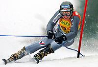 Alpint, 7. februar 2004,  FIS Weltcup, Riesentorlauf der Damen, Tyskland<br /> Andrine Flemmen (NOR)