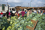 A Cabbage stall in the Makongeni market, Thika, Kenya. The market work closely with Afcic, Action for children in conflict, and are trying to encourage the kids to go to school. The manager has banned children from working in the market during school hours.