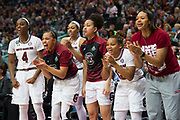 South Carolina Gamecocks cheer for their team against the Mississippi State Lady Bulldogs during the NCAA Women's Championship game at the American Airlines Center in Dallas, Texas on April 2, 2017.  (Cooper Neill for The Players Tribune)