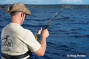 angler Jon Givens brings in line while fishing on Reel Addiction, Vava'u, Kingdom of Tonga, South Pacific