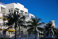 Palm trees in Ocean Drive, in the background historical art deco buildings, this type or architecure is one of the many Miami Beach attractions.