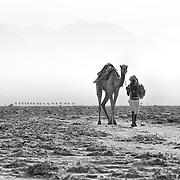 Danakil Depression, Afar Region, North Ethiopia, Africa