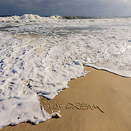 We Dream, Wave, Mecox Beach, Jobs Lane, Bridgehampton, Long Island, NY