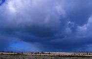 BEL, Belgium, high-moor Hohes Venn, thunderstorm clouds....BEL, Belgien, Hochmoor Hohes Venn, Gewitterwolken........