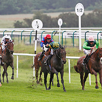Falcon's Reign and James Doyle winning the 2.45 race