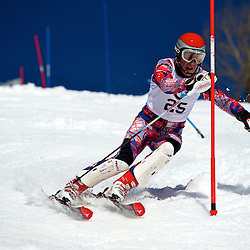 Slalom Serie des maitres BMW Val St-Come 2010
