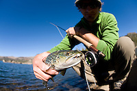 Film maker Michael Wier fly fishing for trout at Caples Lake near Lake Tahoe, CA