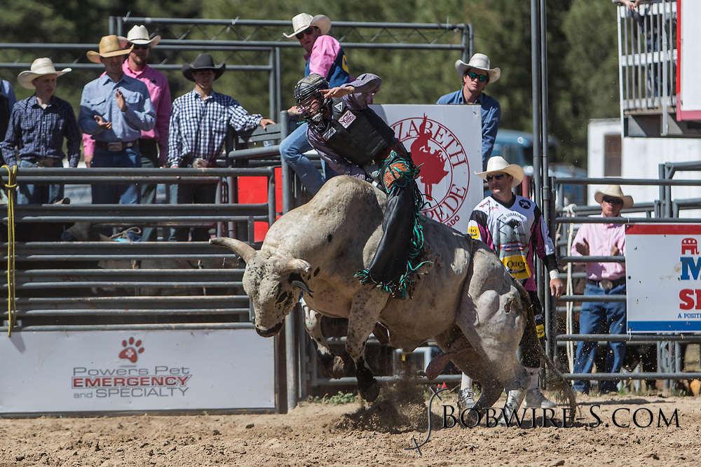 Bull rider Cordell Curtis rides Summit Pro Rodeo's 288 Gladiator in the first performance of the Elizabeth Stampede on Saturday, June 2, 2018.