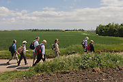 A group of country ramblers walk along a quiet lane near Halstow on the Kent Thames estuary marshes, potentially threatened by the future London airport.