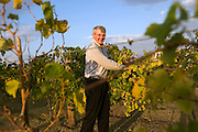 "Greensburg, Kansas, USA..Buergermeister Bob Dixon baut auf seinem Grundstueck Wein an...Mayor Bob Dixon has a small vineyard on his property ..""Greensburg: Better, Stronger, Greener!"".On May 4, 2007, an EF5 tornado cut a 1.7-mile path of destruction through Greensburg, Kansas. Winds reaching speeds of 205 miles per hour uprooted trees, demolished homes and leveled the town. Eleven people died and 95% of the buildings were destroyed beyond repair. Residents have since worked furiously to rebuild it in a way that is both economically and environmentally sustainable and to meet the highest environmental standards. Greensburg, whose population has dropped from about 1400 to 800 following the storm and is now growing again, is currently the greenest town in America and the first in the United States to pass a resolution to certify that all city-owned buildings earn LEED Platinum accreditation, the highest level of the LEED rating system...Foto © Stefan Falke"