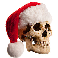 A 3/4 view of a bone skull with jaw, wearing a red santa claus or elf hat with white ball on end.