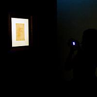 Leonardo Da Vinci, l'autoritratto