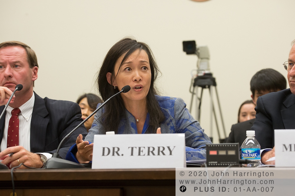 Sue Mi Terry, Ph.D., Managing Director, Bower Group Asia testifies on Wednesday September 14, 2016 hearing before the U.S. House Foreign Affairs Committee on North Korea's Perpetual Provocations: Another Dangerous, Escalatory Nuclear Test, with testimony from <br /> Victor Cha, Ph.D., Senior Adviser and Korea Chair, Center for Strategic and International Studies;  Mr. Bruce Klingner, Senior Research Fellow for Northeast Asia, The Heritage Foundation; Sue Mi Terry, Ph.D., Managing Director, Bower Group Asia; Mr. David Albright, President and Founder, Institute for Science and International Security.