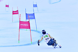 Women's Giant Slalom, van BERGEN Barbara, LW11, NED at the WPAS_2019 Alpine Skiing World Championships, Kranjska Gora, Slovenia