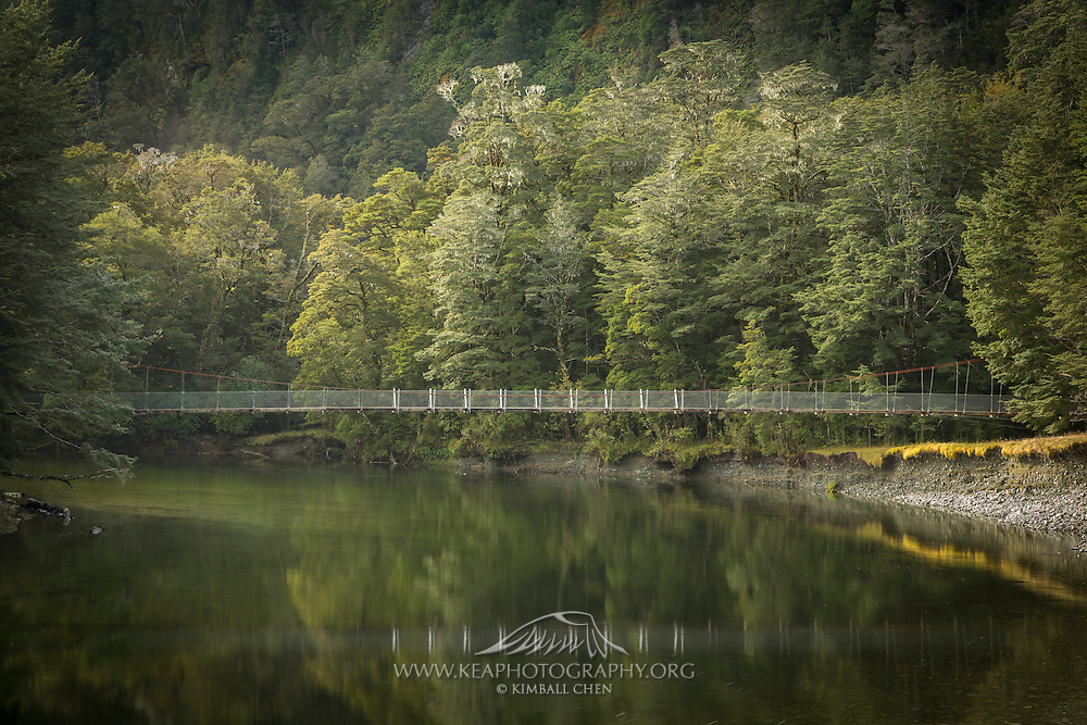 Suspension bridge over the Clinton River, Milford Track, Fiordland