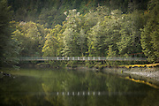 Suspension bridge over the Clinton River, Milford Track, Fiordland