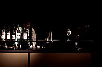 Bartender works slow night at top of Space Needle in Seattle, WA.  Copyright 2008 Reid McNally.