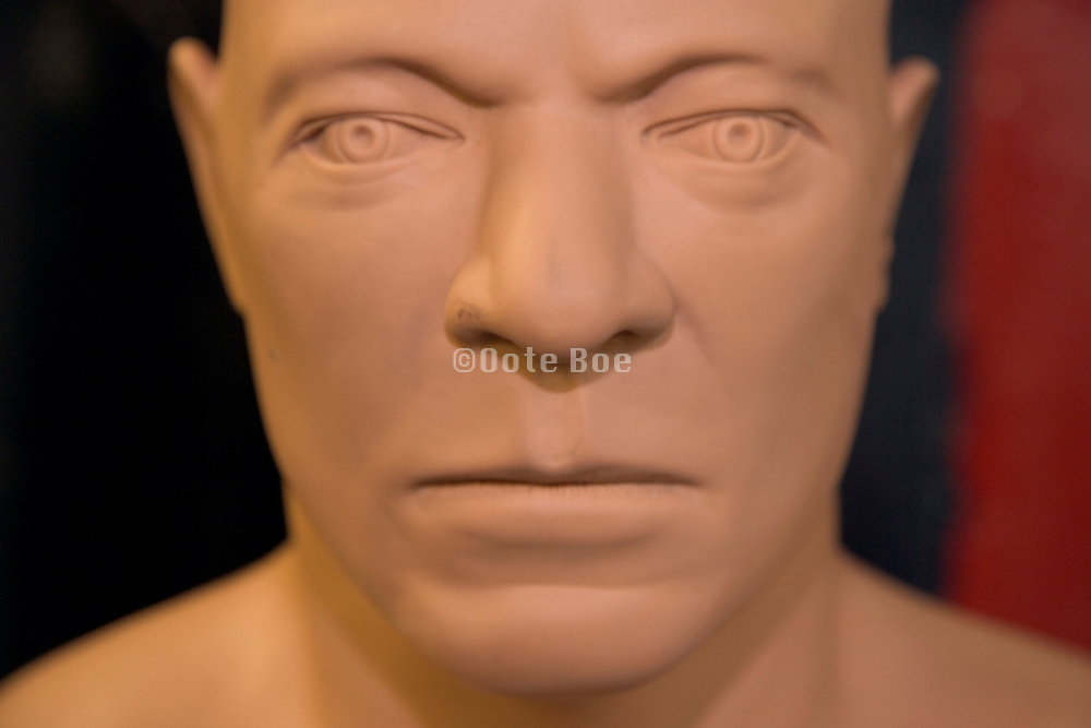 close up of the face of a boxing punch dummy