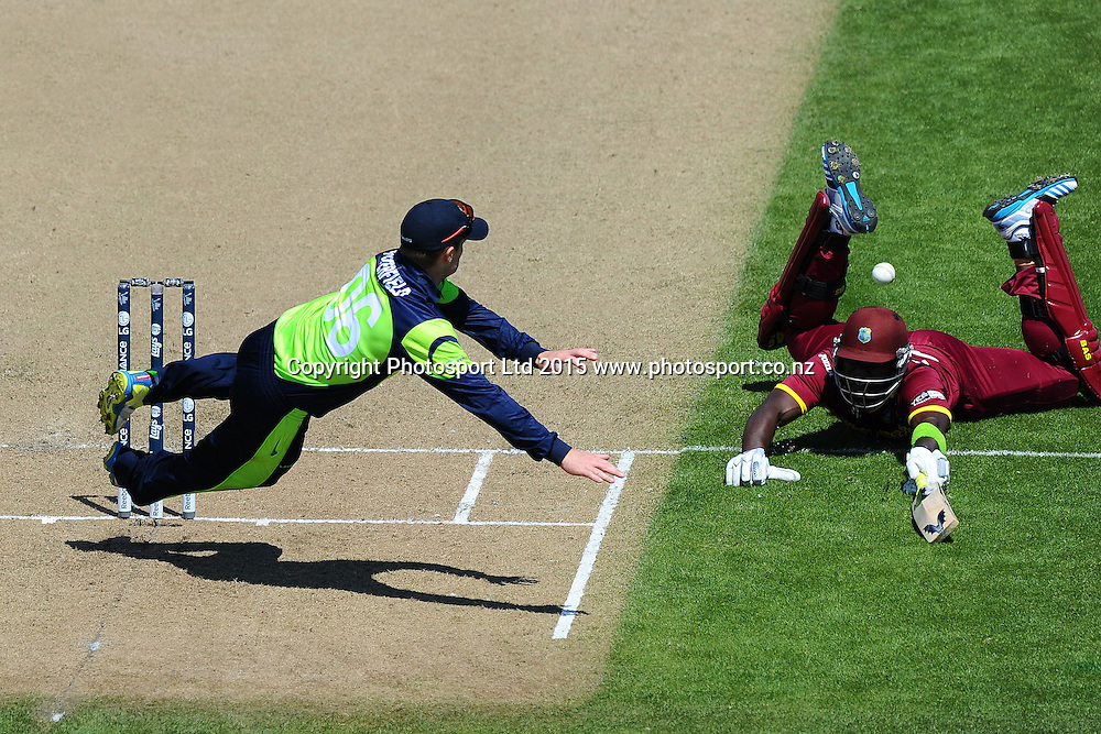 William Porterfield of Ireland tries to run out Darren Sammy from the West Indies during the 2015 ICC Cricket World Cup match between West Indies and Ireland. Saxton Oval, Nelson, New Zealand. Monday 16 February 2015. Copyright Photo: Chris Symes / www.photosport.co.nz