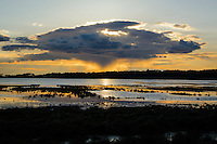 Sunset, Chincoteague National Wildlife Refuge, Virginia, USA