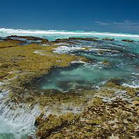 Pennington Bay,Australian sea-lions,Kangaroo Island - South Australia,Nature's Pleasure Island, Australia's 3rd largest Island.