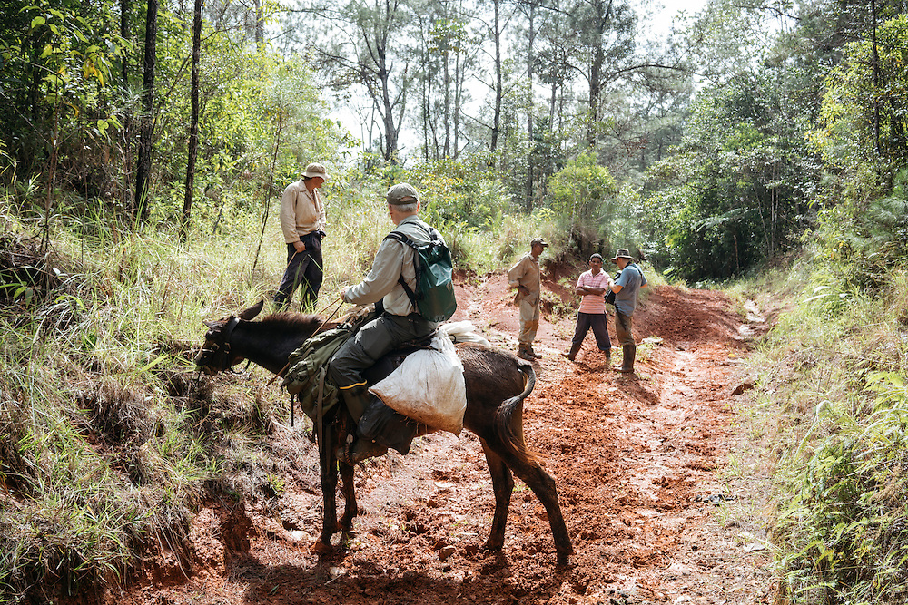 Martjan Lammertink and Tim Gallagher continue on mule and on food to the first campsite in Ojito de Agua on Jan. 30, 2016, a former Russian mining prospect camp in Eastern Cuba.