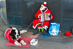 A street performer with a St Bernard (St Bernard puppies sell for about £900) in a Santa suit outside Westminster Underground station in London Eastern European beggars and street performers take advantage of the UK's relative wealth, squeezing opportunities for the UK's own homeless. London, December 13 2018.