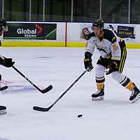 2nd year defence man Tyler Bell (24) of the Regina Cougars in action during the Men's Hockey Home Opener on October 21 at Co-operators arena. Credit: Arthur Ward/Arthur Images