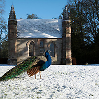 Scone Palace in the Snow