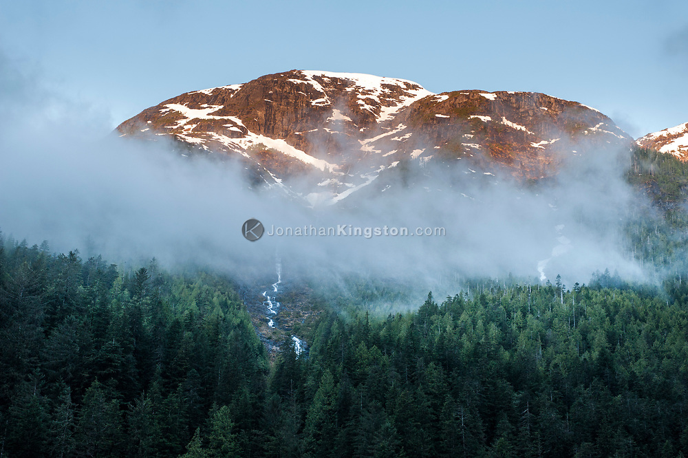 Alpenglow on a mountain above fog and trees in British Columbia.