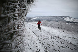 © Licensed to London News Pictures. 17/01/2016. Dorking, UK. A cyclist passes snow covered vines on the Denbies Wine Estate. Snow has fallen in the South East for the first time this winter. Photo credit: Peter Macdiarmid/LNP