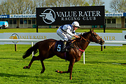 "Freckles ridden by Tyler Saunders and trained by Marcus Tregoning in the Free Tips From ""Sandstorm"" At Valuerater.Co.Uk Handicap race.  - Mandatory by-line: Ryan Hiscott/JMP - 01/05/2019 - HORSE RACING - Bath Racecourse - Bath, England - Wednesday 1 May 2019 Race Meeting"