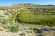 Intermittent stream in the Red Desert of Wyoming