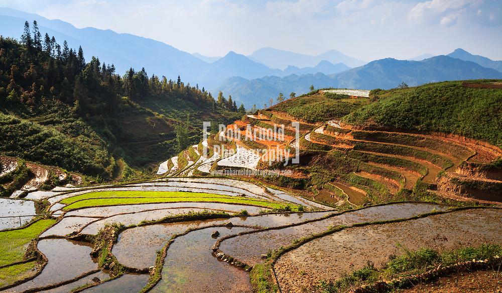 18/04/2013 - Sa Pa, Vietnam. Rice Paddies in the mountains near to Sa Pa, Northern Vietnam. Photo by Rob Arnold