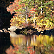 A splash of fall color reflected in a lake in Harold Parker State Forest in Andover, Massachusetts