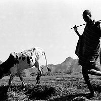 karamajong uganda