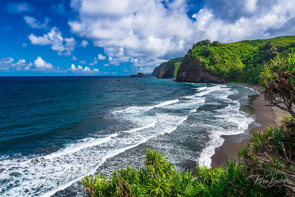 Pololu Valley and beach (family visible in surf), North Kohala, The Big Island, Hawaii USA