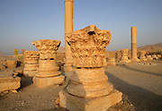 The Baalshamin sanctuary, Chief fertility god, begun in 2nd century BC, colonnaded courtyard added after 67 AD, cella in 130 AD, view of acanthus column capitals with the Tetrapylon in the distance, Palmyra, Syria Picture by Manuel Cohen