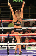 Picture by Richard Gould/Focus Images Ltd +44 7855 403186<br /> 02/11/2013<br /> The ring girls tonight at the Hull Ice Arena, Hull.