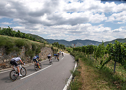 08.07.2019, Wiener Neustadt, AUT, Ö-Tour, Österreich Radrundfahrt, 2. Etappe, von Zwettl nach Wiener Neustadt (176,9 km), im Bild Das Peleton der Ö-Tour in der Wachau, Niederösterreich // the peleton at the Wachau Lower Austria during 2nd stage from Zwettl to Wiener Neustadt (176,9 km) of the 2019 Tour of Austria. Wiener Neustadt, Austria on 2019/07/08. EXPA Pictures © 2019, PhotoCredit: EXPA/ Reinhard Eisenbauer