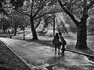 A couple looking with amazement at the light shining throught the trees in Central Park, New York City