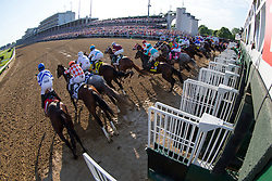 The twenty horse field breaks from the gate in the 142nd running of Kentucky Derby, Saturday, May 07, 2016 at Churchill Downs in Louisville.