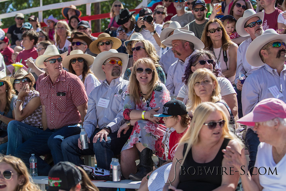 Rodeo fans watch the first performance of the Elizabeth Stampede on Saturday, June 2, 2018.