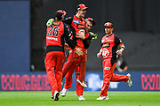 17th February 2019, Marvel Stadium, Melbourne, Australia; Australian Big Bash Cricket League Final, Melbourne Renegades versus Melbourne Stars; Renegades players celebrate a wicket during the late stages of the game